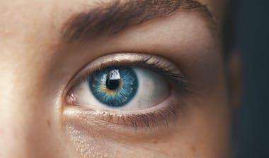 Eye PM trends1600